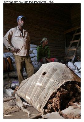 Früher hat der Bauer am Zustand der Blätter erkannt, was zu tun ist, heute nutzen die Robainas Messgeräte.