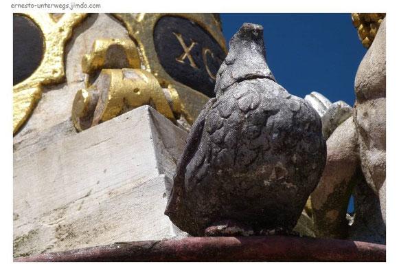 Trier ist auch mit Tauben gesegnet.