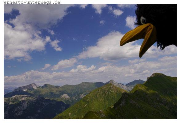 Am Monte Crostis
