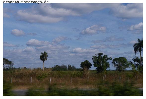 Ziemlich flach hier. Im Laufe meines Aus-Fluges sollte ich feststellen: Das westliche Kuba ist in weiten Teilen topfeben.