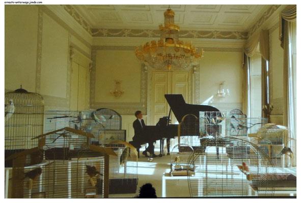 Wo bin ich? in »Playing to the Birds«, 2013, von Annika Kahrs– Courtesy of the artist and Produzentengalerie Hamburg Installationsansicht »Höhenrausch 2015 - das Geheimnis der Vögel« OÖ Kulturquartier Linz, 2015