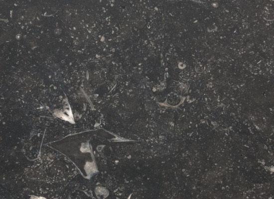 Belgisch Blaustein - Marmor