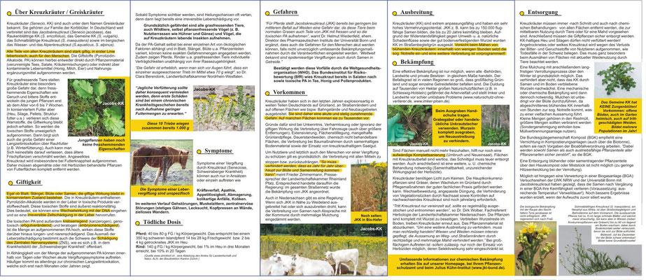 Kreuzkraut Info-Flyer, 10 Seiten, gefalzt auf DIN lang