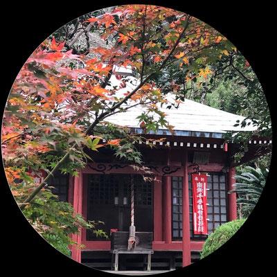 駿河七観音の一つとされる行基菩薩作の千手観世音菩薩像が安置されており、七年に一度に御開帳されます。