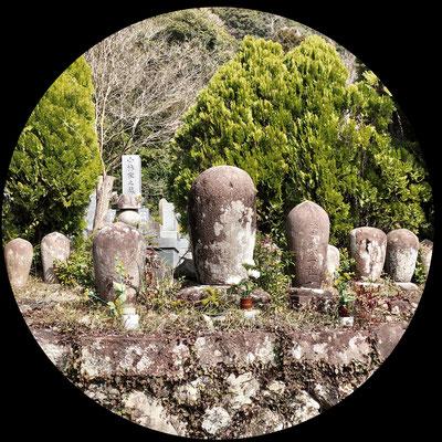 中央にあるのは増善寺の歴代住職、増善寺四十三世までの墓地です。中央のお墓が御開山の辰応性寅禅師の卵塔です。