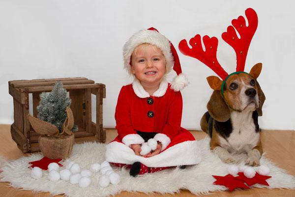 Die kleine Weihnachtsfrau und ihr Weihnachtsbeagle posieren für die Weihnachtsfotos