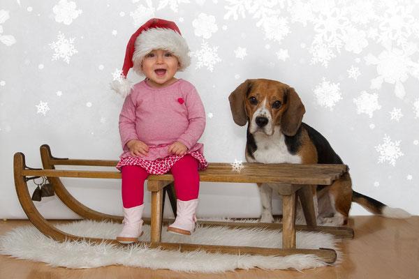Weihnachtsshooting auf einem Schlitten mit Kind und Hund