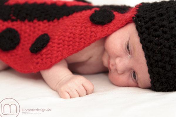 Neugeborenenfotos als Marienkäfer