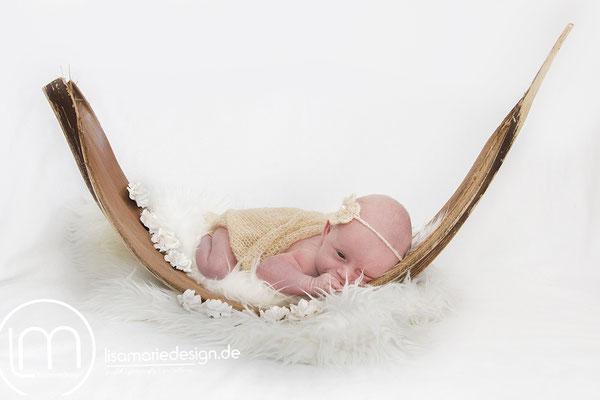 Neugeborenes bei einem Newbornshooting in einem getrocknetem Kokosblatt