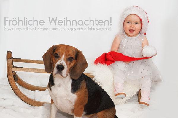 Kinder-Weihnachtsshooting mit dem Haustier