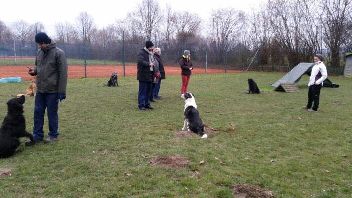 Zuerst bleibt der Hund außen sitzen und die Besitzer stehen in der Mitte...