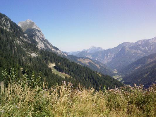 Und am Rückweg von der Neuburg-Alm runter nach Radmer. Links im Bild: die vom Gletscher (?) abgehobelte Lugauer-Flanke, unten im Tal liegt Radmer.