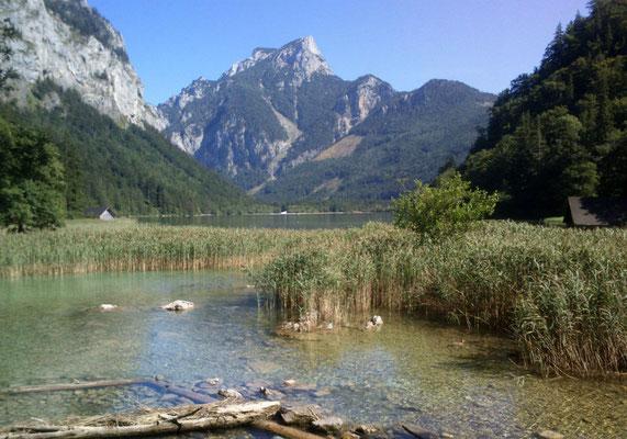 """Blick von """"unten"""" (See-Abfluss) über den Leopoldsteinersee. Der feine weiße Streifen hinten ist: feinster Kies! (Foto: Frank Butschbacher)"""