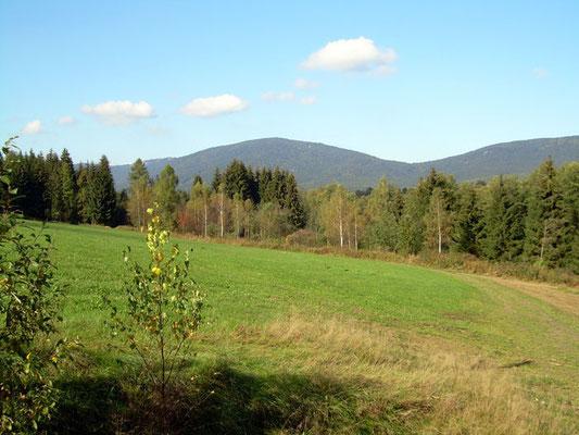 Herrliche Wanderungen in der mystischen Natur des Bayerwaldes erleben