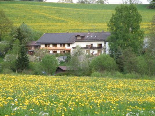 Das Landhaus Riedelstein in Drachselsried - idyllisch gelegen