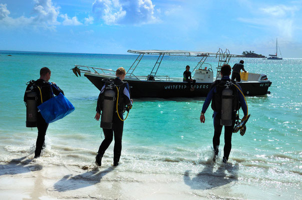 Immersioni a Praslin, Seychelles