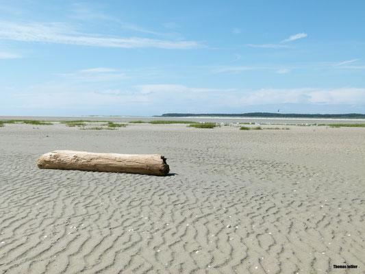 Paysage de la baie de Somme
