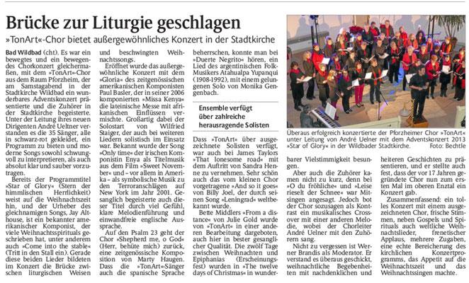 Schwarzwälder Bote vom 5.12.2013
