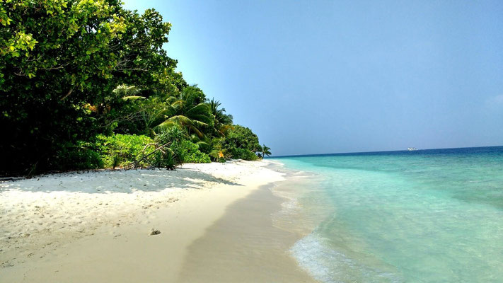 Endless powdery white beaches and tranquil surrounds make the Maldives a top destination. Dante Harker