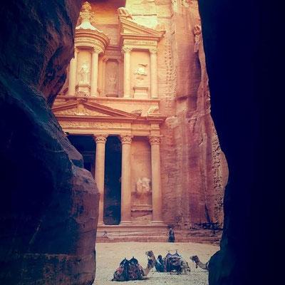 Amazing Petra - Dante Harrker