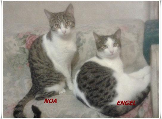 Las pequeñas Noa y Engel