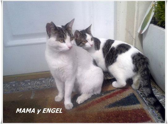 Mama y Engel