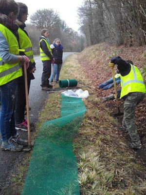 Creusement des tranchées pour installer le filet - Gaelle Goriau - 2015