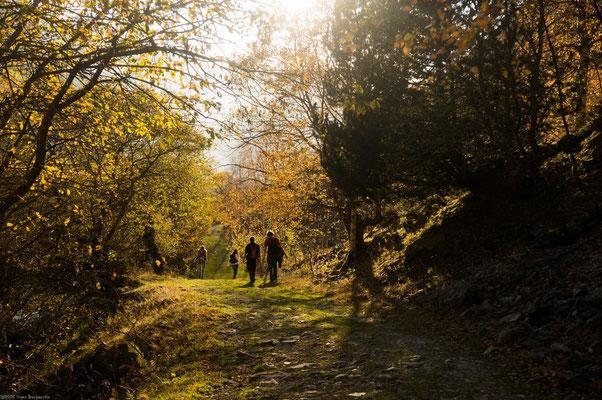 Une belle journée d'automne - N.Burgarella