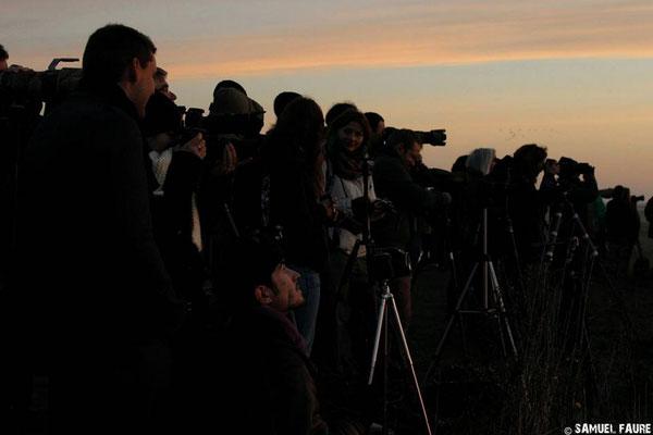 Du monde pour voir l'envol des Grues - 2014 - S.Faure
