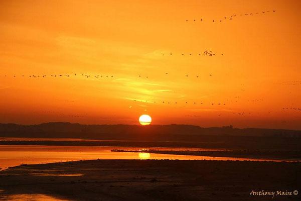 Lever de soleil - 2014 - A.Maire