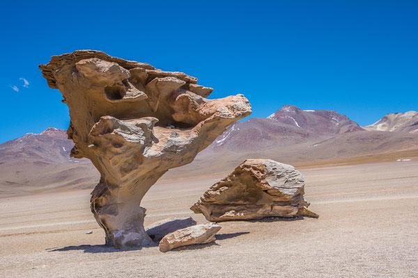 Der Arbol de Piedra, eine 5m hohe Steinskulptur