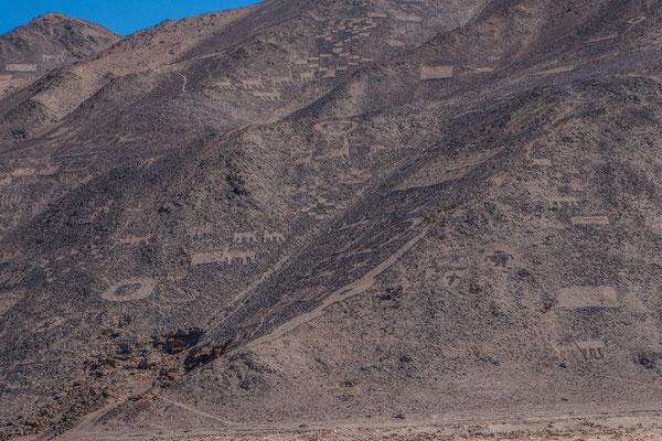 """Geoglyphen von """"Cerro Pintado"""""""