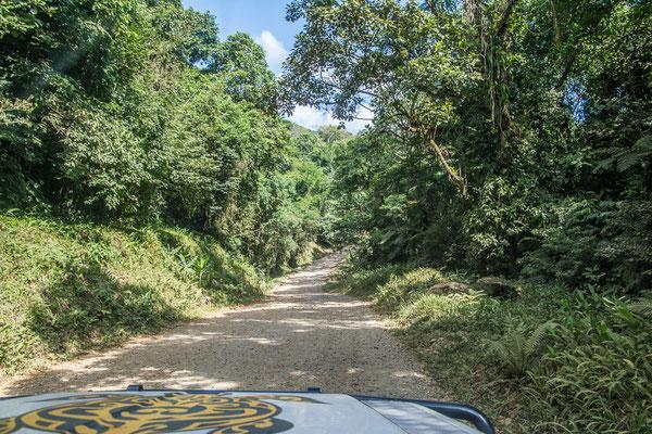 Rumpelpiste durch den Dschungel nach Guaraquecaba