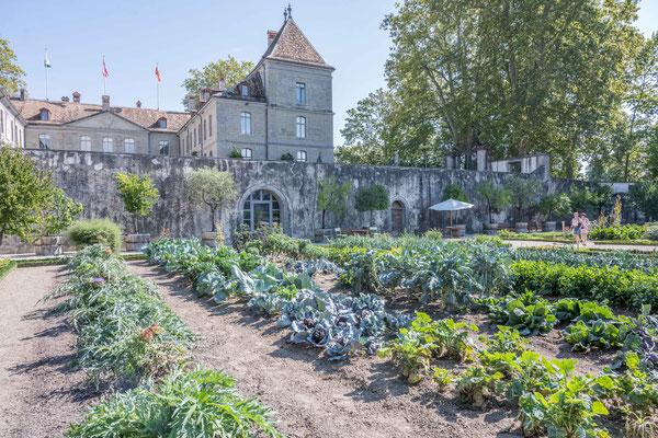 Garten des Schloss Prangins