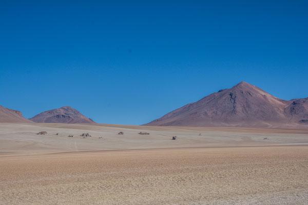 Desierto Salvador Dali