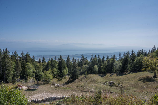 Aussicht auf den Genfer See vom Restaurant La Barilette