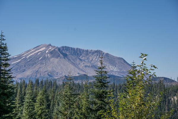 Mt. St. Helens aus der Ferne. Gut zu sehen der Krater an der Nordseite