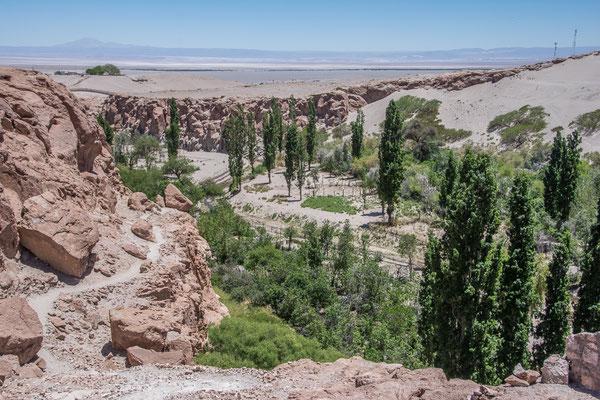 Valle de Jere bei Tococnao