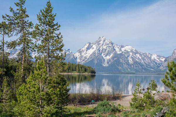 Am Jackson Lake, Moran Mt. im Hintergrund
