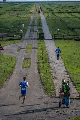 Volks Triathlon, Bei der Hamburger Halligen