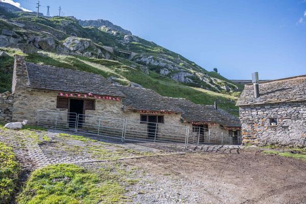 Alpe Stegegia