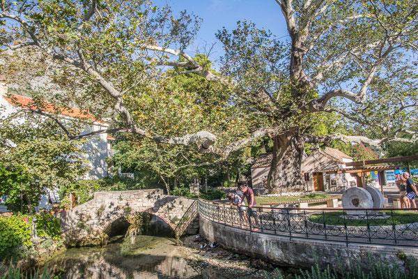 Mlini, Kroatien