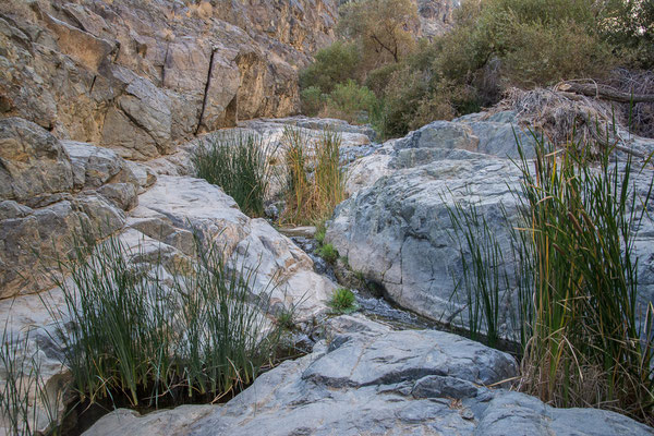 Darwin Falls Canyon