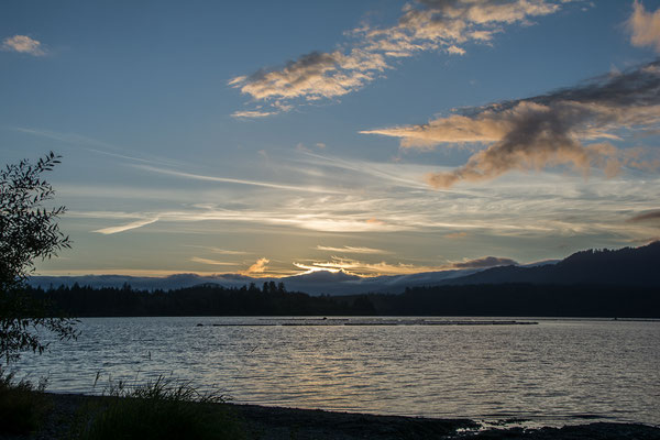 Sonnenuntergang am Quinault LAke