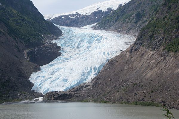 Bear Glacier bei Stewart