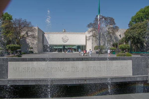 Das anthropologische Museum