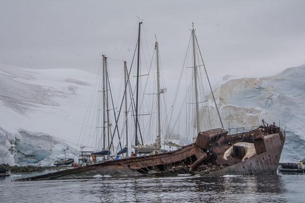 Wrack eines Walfängers