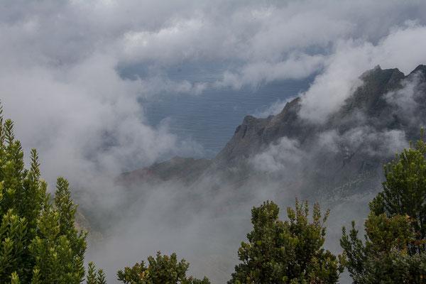 Waimea Canyon,  Pu'u O Kila Aussichtspunkt