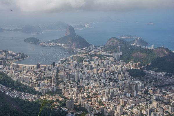 Rio und Zuckestock