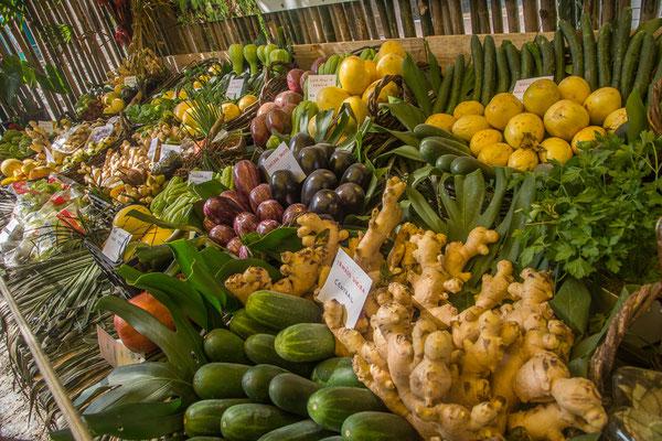 Die Landwirtschaftsmesse in Morettes